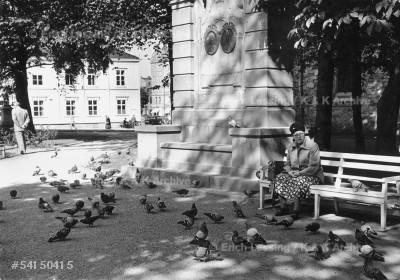 Feeding pigeons in Tromsoe, Norway.