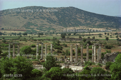 Overall view of Aphrodisias,Turkey. In the foreground  