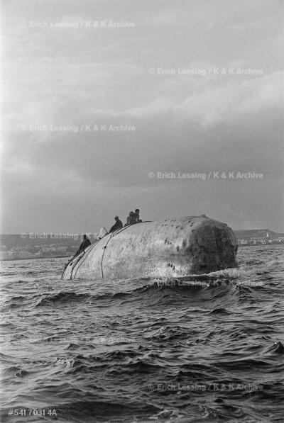 "John Huston's film ""Moby Dick""after the novel by Herman Melville, starred Gregory Peck,Orson Welles, Friedrich Ledebur and Richard Basehart."