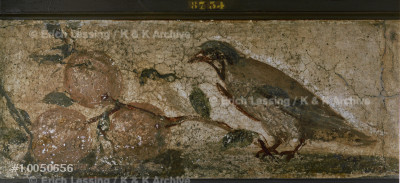 Bird and fruits.                                       Mural from Pompeii, Italy