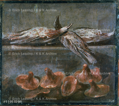 Still-life with birds and mushrooms.                   