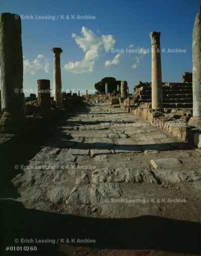 Ceremonial road to the temple compound of Salamis.