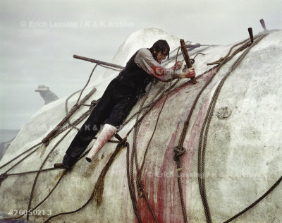 Captain Ahab (Gregory Peck) attacks the white whale. Movie Moby Dick Canary Islands, 1954.