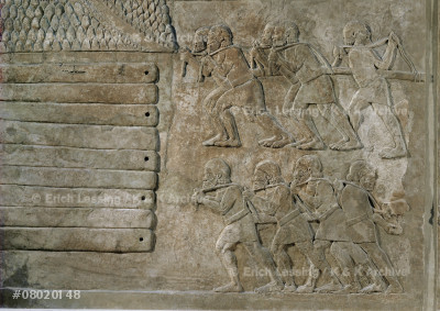 Men carrying cedar wood for palace construction.       