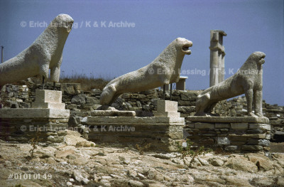 Four lions on the Lion's Terrace, Delos. Five of       at least nine original lions still face the Sacred     Lake.                                                  Marble from Naxos